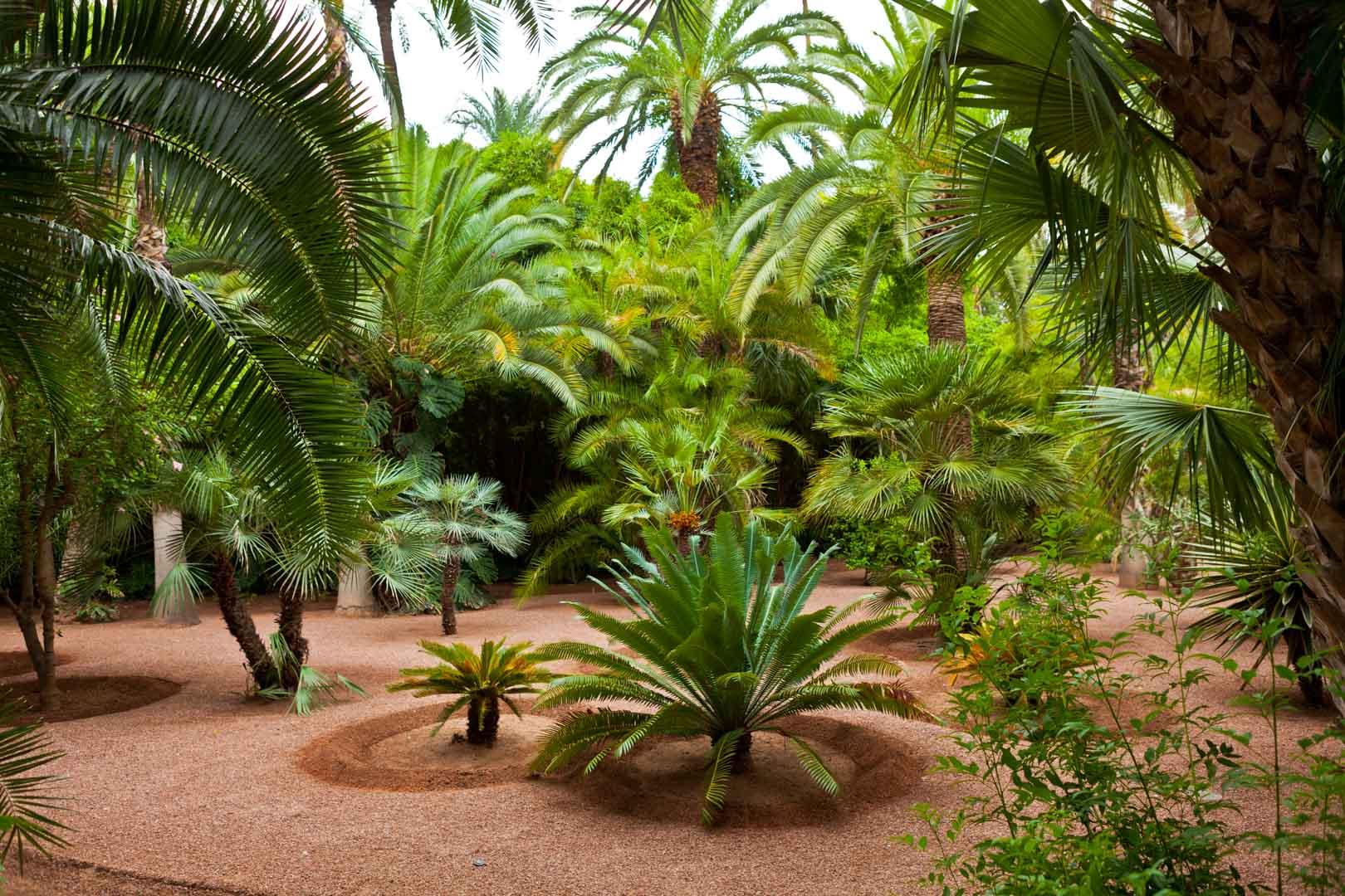 Jardin Majourelle